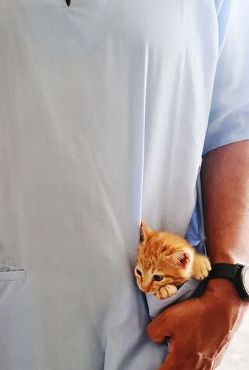 Midsection of man with cat