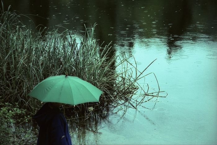 35mm Film Analogue Photography Baby Film Man Plant Rain Raining Reflection Crosprocess Cross Process Drop Lake Umbrella Water Go Higher