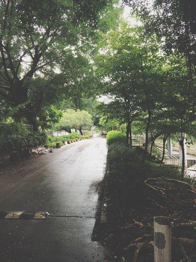 又落雨,想去旅游