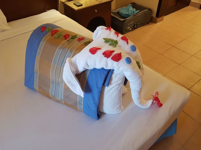 Towel Art - Elephant Towel Art Towel Elephant Towel Animal Towel Decoration Towel Animals In A Bed Funny Suitcase Hotel Room EyeEm Selects High Angle View Childhood Indoors  Full Length Business Stories