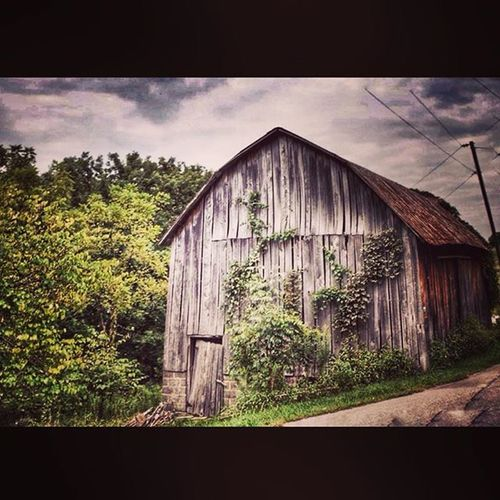 Scenic_roads Barn Farmlife Trb_country ajl_rural ipulledoverforthis road_lovers rural_love ig_countryside backroads igers_of_wv wv_igers westvirginia outdoors natureaddict