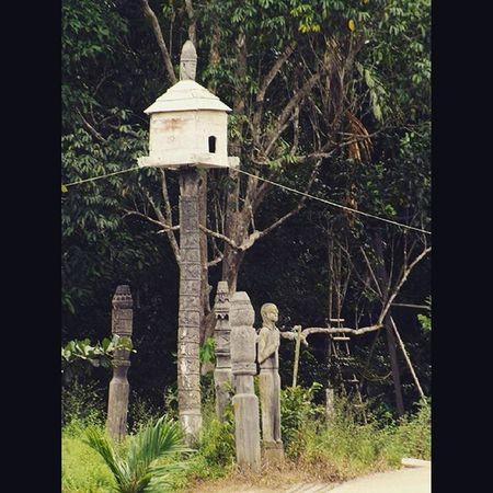 InstaMagAndroid Borneo Borneophoto_hunter Dayak ethnic travelgram tripborneo