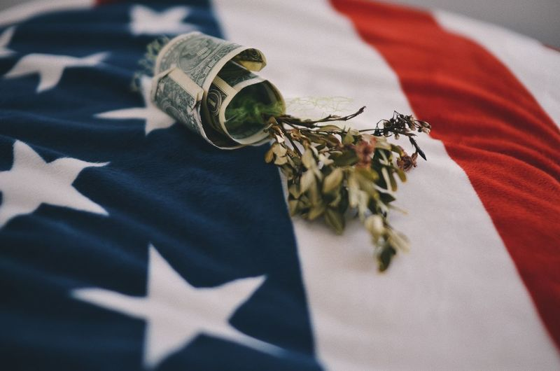 Close-Up Of Dry Plant With Paper Currency On American Flag