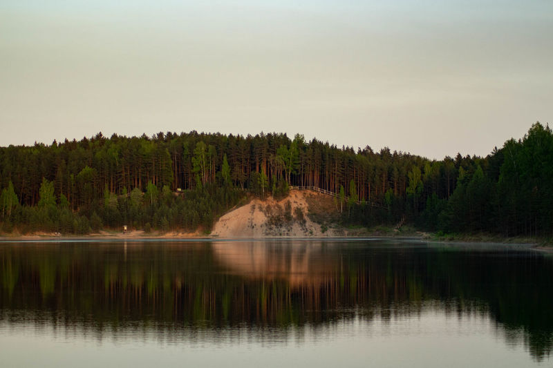 Calm evening at lake Tree Water Scenics - Nature Reflection Beauty In Nature Plant Tranquil Scene Lake Sky Tranquility No People Forest Nature Non-urban Scene Land Day Waterfront Growth Idyllic Outdoors Coniferous Tree Pine Woodland Calm Evening Sunset