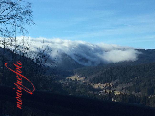Hochschwarzwald an Weihnachten 2016. 💕💗 Monique52 Dezember 2016 Iphone6 The Purist (no Edit, No Filter) Südschwarzwald Hochschwarzwald