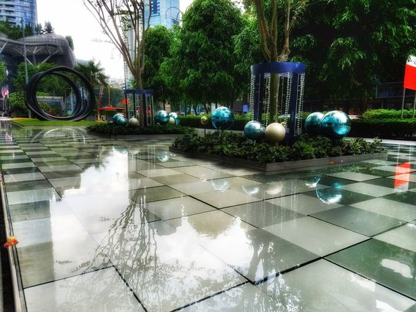 Reflection Tree Water No People Outdoors Close-up Sky Day Streetphotography Architecture City Life Travel Destinations Sojourn Sojourner Reflection Singapore Downtown District Cityscape Office Building Exterior