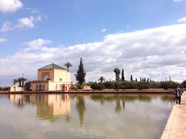 tranquillité et olives! 😬 - Marrakesh Jardin Park Enjoying The Sun Travelling Chilling