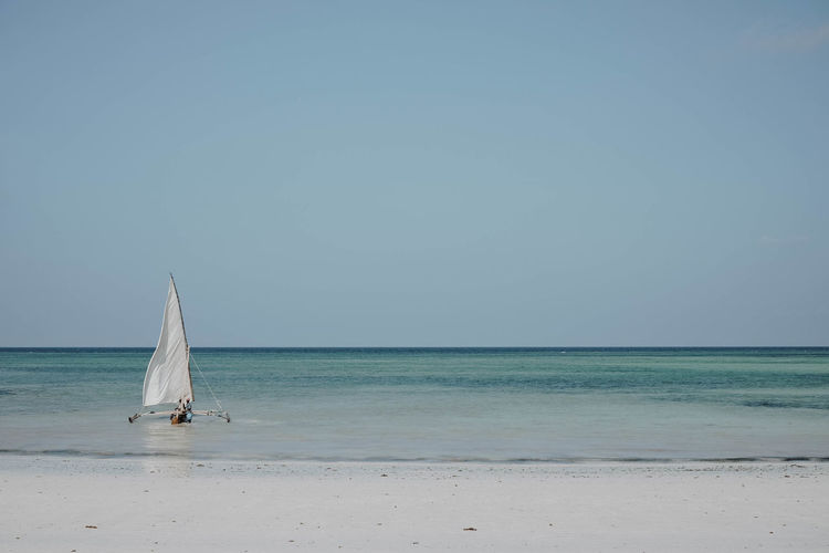 Sea Horizon Horizon Over Water Water Sky Sailboat Scenics - Nature Beauty In Nature Clear Sky Copy Space Land Nautical Vessel Tranquil Scene Tranquility Beach Nature Day Transportation Blue No People Luxury