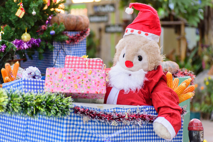 December Doll Event Gift Box Holiday New Year Santa Claus X-mas Xmas Celebration Childhood Christmas Christmas Decoration Christmas Present Close-up Day Garden Gift Holiday - Event No People Outdoors Present Stuffed Toy Teddy Bear Tree