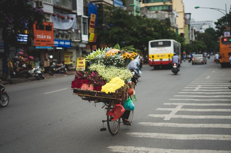 Flowers in crate on bicycle at city