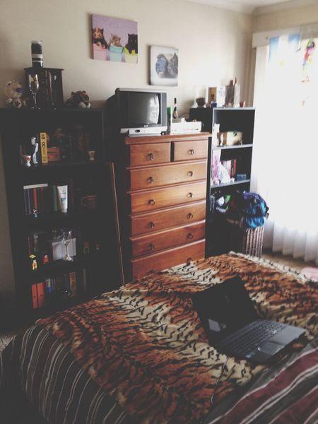 My room ??? Room Light Cute Adorable