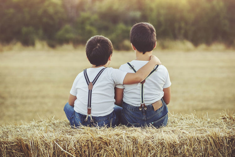 Children Family Friends Happiness Loneliness Love Siblings Sitting Boys Brothers Child Childhood Embrace Friendship Grass Outdoors Playful Son Straw Twins Two People