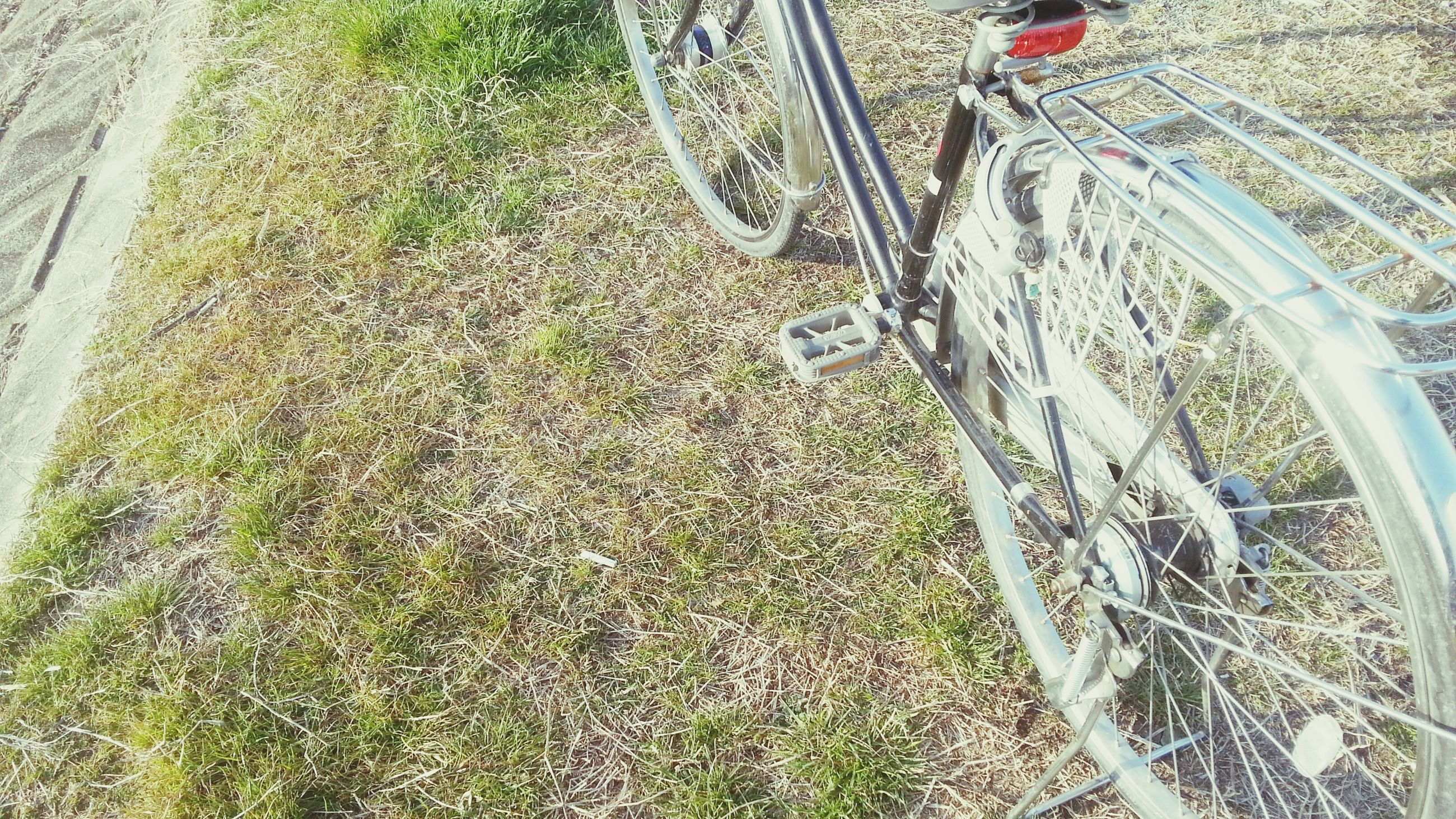 transportation, high angle view, mode of transport, grass, land vehicle, bicycle, field, day, outdoors, metal, plant, sunlight, the way forward, growth, road, wheel, green color, no people, footpath, street