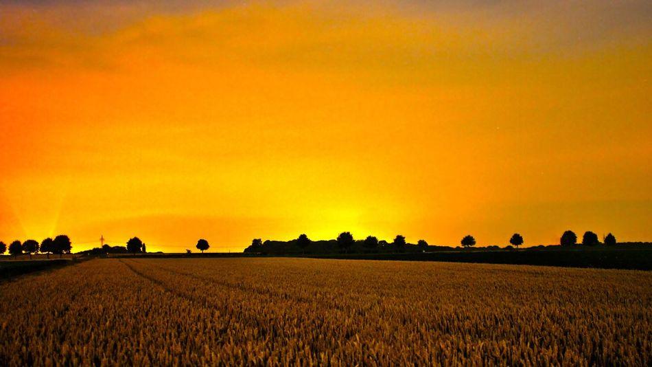 Mitternacht HDR Gelb Yellow Midnight