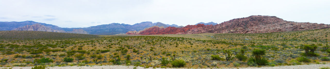 Red Rock Canyon Panorama Arid Climate Countryside Day Geology Hill Landscape Majestic Mountain Mountain Range Non-urban Scene Outdoors Physical Geography Remote Scenics Tranquil Scene Tranquility