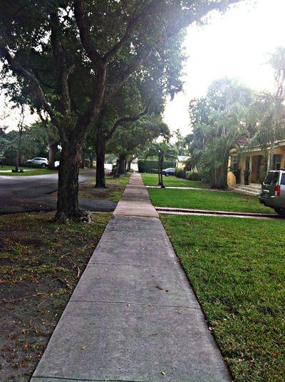Running on the unforgiving asphalt 5k Journey