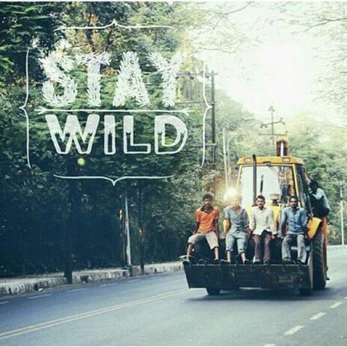 Stay wild Mumbai Mumbai_life Wild Crazy Okbye