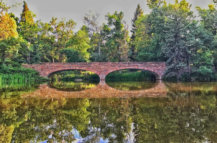 Reflection Tree Water No People Day Bridge - Man Made Structure Outdoors Nature Lake Tranquility Growth Beauty In Nature Scenics Sky