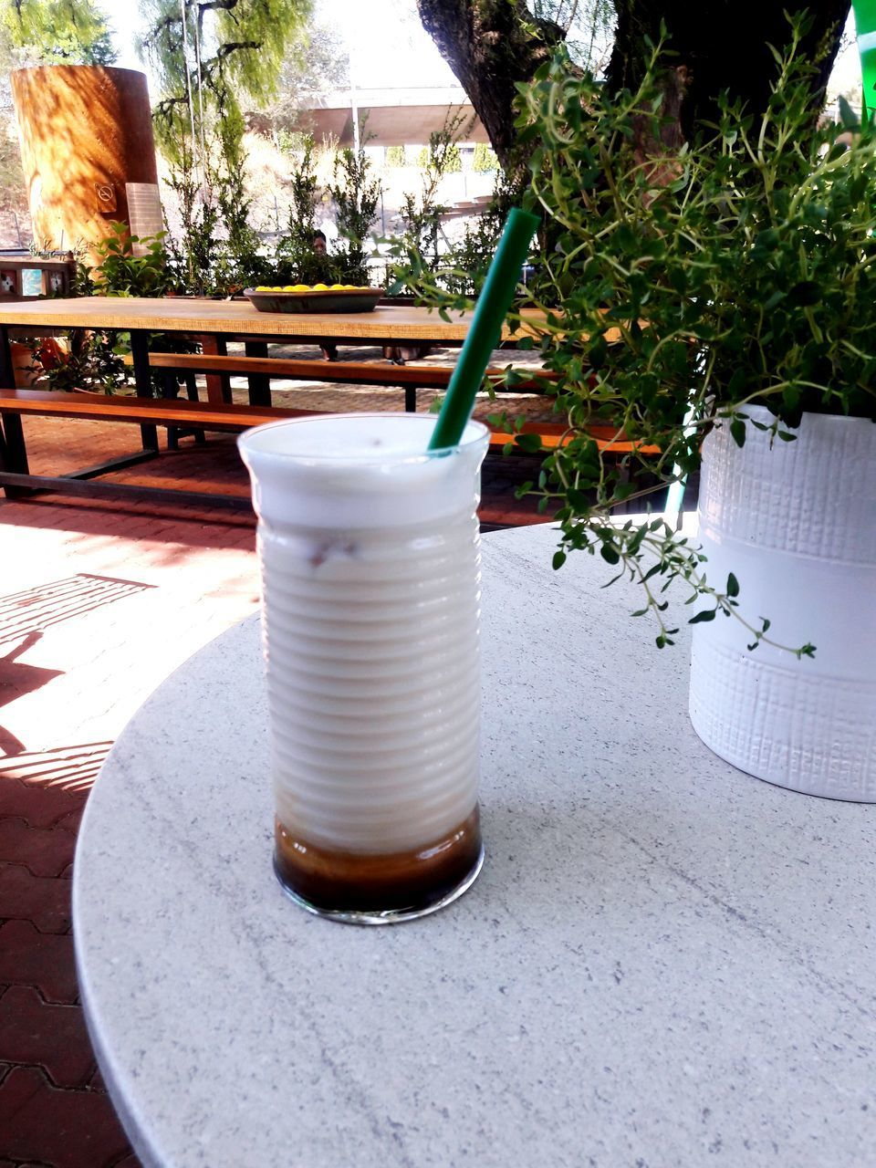 CLOSE-UP OF COFFEE ON TABLE AGAINST PLANTS