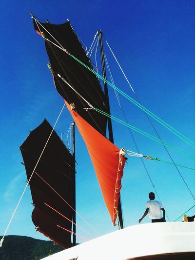 Sailboat Sailboats