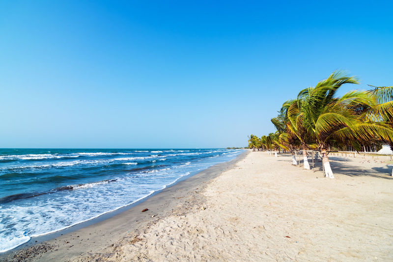 White sand beach and palm trees on the Colombian Caribbean coast in Covenas America Beach Beautiful Blue Caribbean Coast Colombia Coveñas Day Landscape National Park Nature Nature Outdoors Palm Scenic Sea South Sucre Tolu Tourism Travel Tree Tropical Water