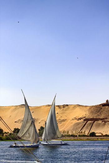 Sailboats sailing on sea against clear blue sky