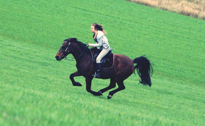 Lovelovelove Horseriding Me And My Horse