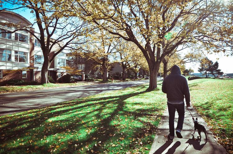 VictoriaIsland Canada Autumn Britishcolumbia