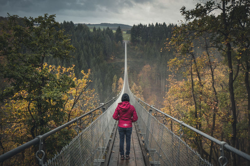 Woman on Geierlay Suspension Bridge (Footbridge), Mörsdorf, Germany in Autumn at sunset Autumn Autumn Colors Autumn Leaves Footbridge Hängebrücke Hängebrücke Geierlay Morning Mörsdorf Trekking Beauty In Nature Bridge - Man Made Structure Footbridge Footbridge Crossing Geierlay Girl Lifestyles Moerdorf Nature One Person Real People Rear View Sunset Suspension Bridge An Eye For Travel The Traveler - 2018 EyeEm Awards