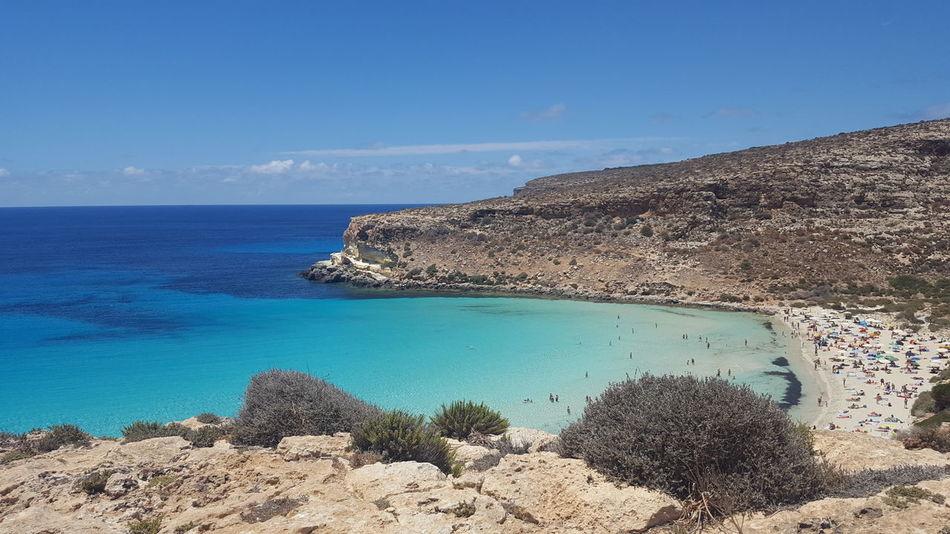 Lampedusa  Zelenezen Puravida