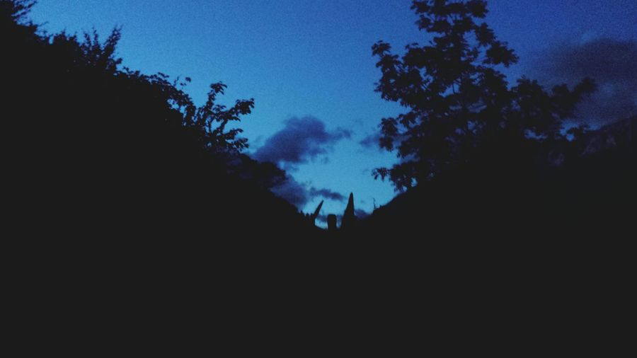 Silhouette Tree Dark Blue Sky Nature Night Adult People Outdoors Beauty In Nature Adults Only Only Men Astronomy Mobilephotography Mestia Svaneti Georgia Svanetia Beauty In Nature Nature Photography Dark Evening Mysterious Mysterious Place Mystery Atmosphere