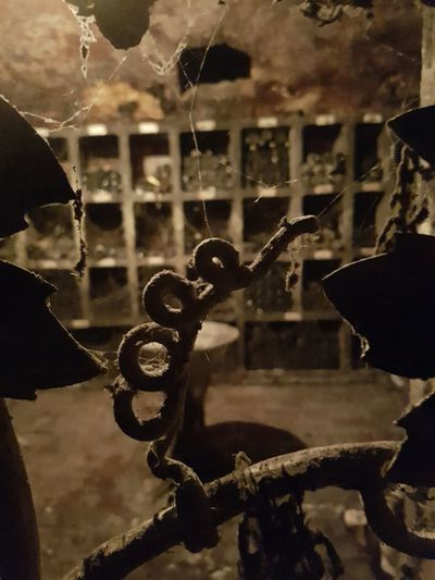No People Metal Cellar Wine Tasting Wine Moments Winery Wine Cellars Wine Cellar Door Rusty Close-up Focus On Foreground Darkness And Light Spinweben Cobwebs Weinkeller Eisentor Iron - Metal Iron Gate