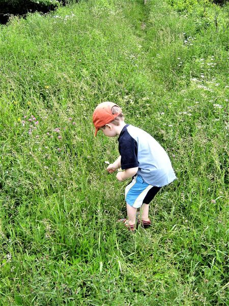 Casual Clothing Childhood Fun Day Full Length Grass Green Color One Person Outdoors People EyeEmNewHere Wildflowers Wild Flowers Orange Hat Finally Outdoors Finally Spring Finally Summer Nature Pickingflowers Picking Flowers  Picking Flowers For Mom Elementary Age Purple Flowers Impending Summer