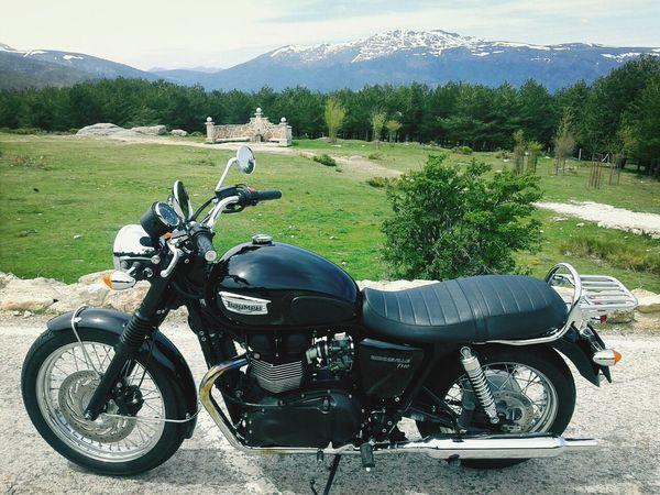 Enjoying Life Motorbike