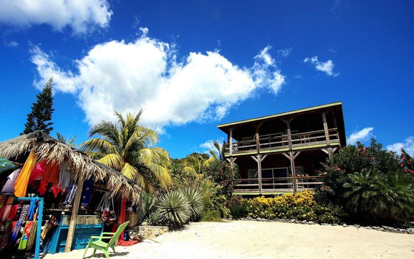 Beach house Sky Cloud - Sky Day Nature No People Palm Tree Building Exterior Outdoors EyeEm Best Shots Tranquility Beauty In Nature Belize  Beachphotography Green Color EyeEm Nature Lover Sun Vacation Sand Palm Trees