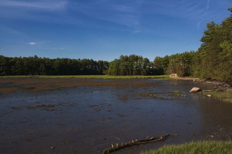 Adams Point Wildlife Sanctuary Bay Beauty In Nature Landscape No People Non-urban Scene Outdoors Tranquil Scene Water