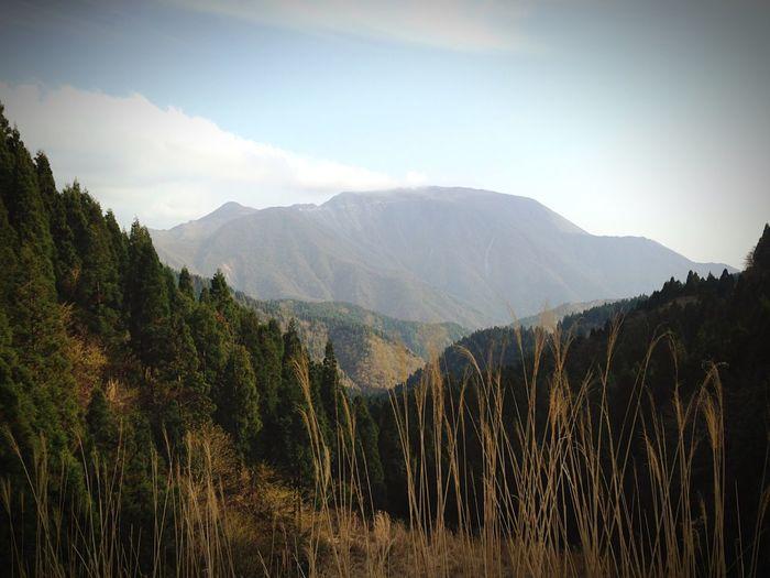 伊吹山 Mountain