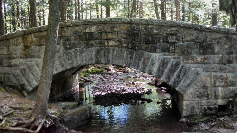 Arch Architecture Built Structure Water Forest Outdoors Stone Material Stone Bridge Solitude Acadia National Park Maine Majestic Travel Destinations Beauty In Nature EyeEm Nature Lover EyeEm Best Shots EyeEm Masterclass Smartphonephotography Eeyem Photography EyeEm Gallery Mobile Photography Lobuephotos From My Point Of View Through My Lens History