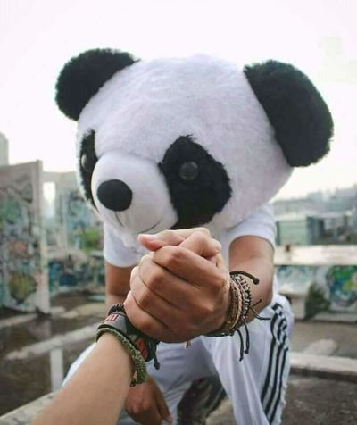 Hand By Hand We Stand Outdoors PANDA ♡♡ Panda Bear Mask - Disguise