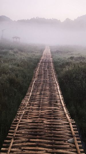 Boardwalk against trees during foggy weather