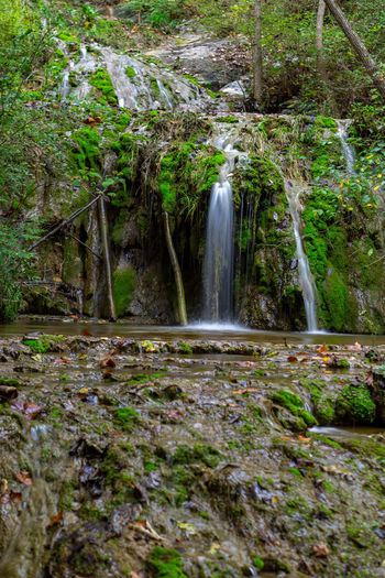 Waterfall into a pool Green 50mm Tree Water Waterfall Forest Motion Long Exposure Power In Nature Moss Landscape Flowing Water Rock Formation Flowing Falling Water Stream - Flowing Water Eroded Rock Stream Lush Foliage