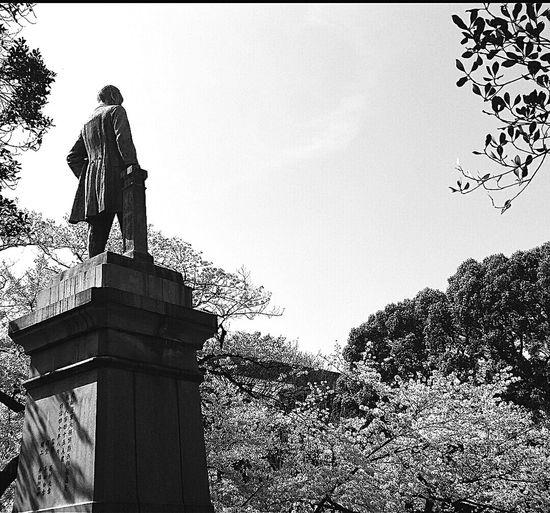 Statue Sakura Spring 2015 Chidorigafuchi Pedestrian Path Tokyo Japan Travel Photography