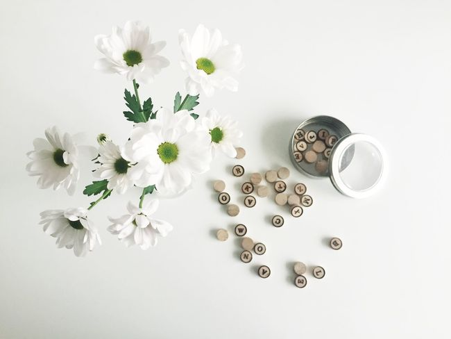 Flatlay Flower Freshness Minimal Minimalist On The Table Top View White White Background White Color Whiteaddict Words