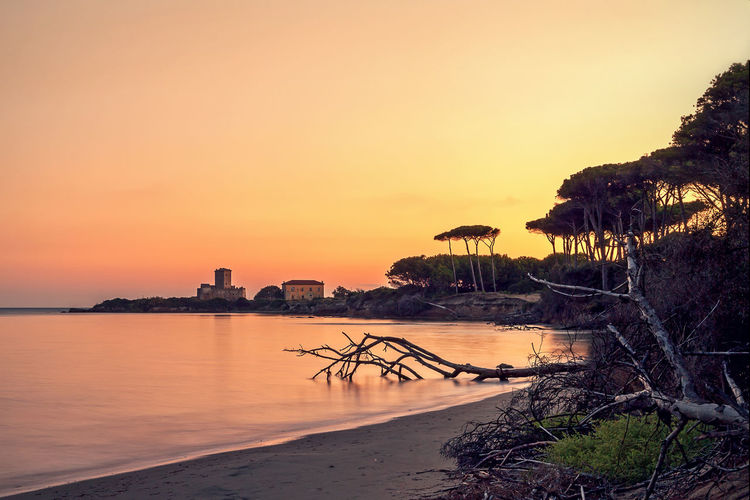 Sunset on the wild beach and the pine forest in the background an ancient castle on the sea. Beach Beauty In Nature Castle Idyllic Nature No People Orange Color Outdoors Scenery Scenics Sea Selfie Sunset Torre Astura Tranquility Water Wonderful