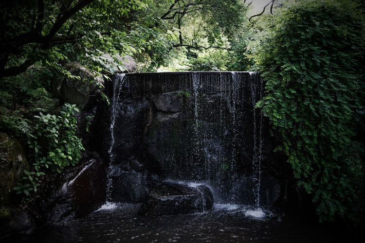 2018 EyeEm Ito Izu, Japan Architecture Built Structure Day Flowing Flowing Water Forest Green Color Growth Land Maruyamapark Motion Nature No People Outdoors Plant Rock Scenics - Nature Solid Tranquility Tree Water Waterfall
