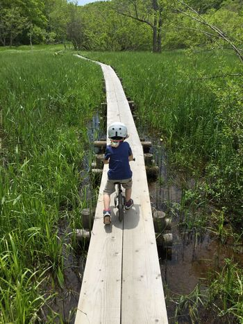 Creek Fun Green Kids Being Kids Leading Lines Swamp Adventure Bike Boy Casual Clothing Day Full Length Grass Growth Leisure Activity Lifestyles Moore Nature One Person Outdoors People Real People Stryder Tree Young Adult