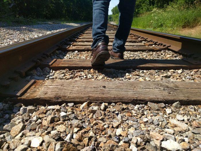 Traintracks Reisterstown Woods