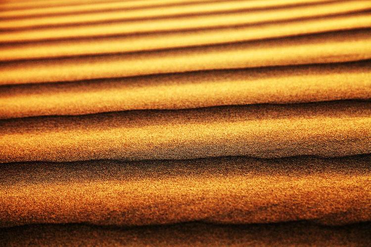 Full Frame Shot Of Sand Dunes In Thar Desert