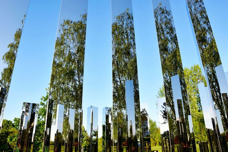 mirrorwood Mirror Column Spiegel Column Pillars Mirror Picture No Edit/no Filter Noedit Nofilter Nature Beauty In Nature Mirror Mirrored Modern Art Mirrorworld Mirror Reflection Berlin Photography Colorful Triangle Outdoor Photography Outdoors Tree Forest Pine Tree Flower Sky Plant Close-up Green Color Creative Space