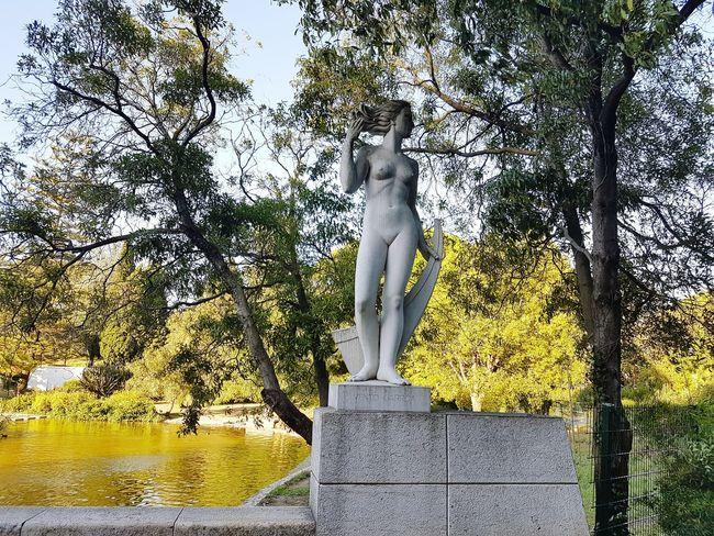 Statue Human Representation Creativity No People Park Lisbon Sculpture Green Color Day Lisboa Tree